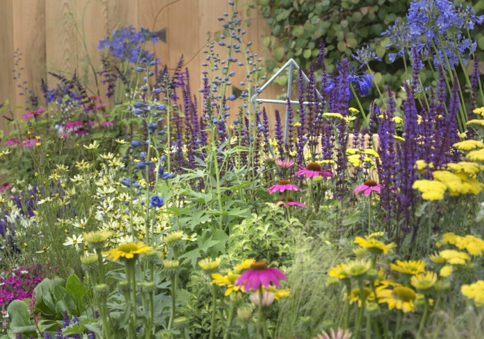 Let's Go Fly A Kite! - RHS Flower Show Tatton Park 2019 - Planting Design